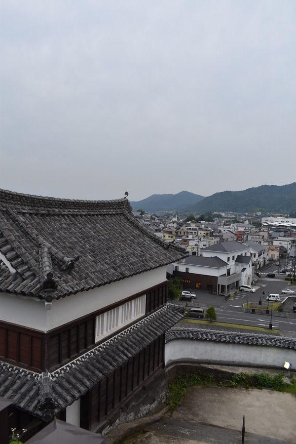 臼杵城と城下町 (27)