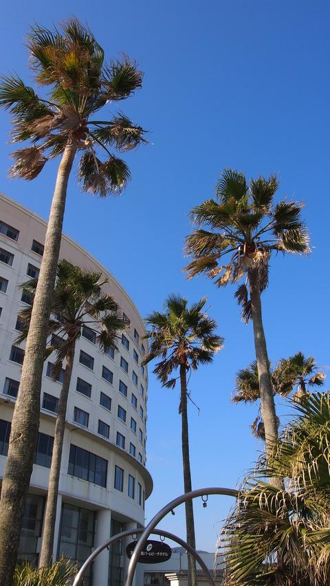 青島パームビーチホテル(6)