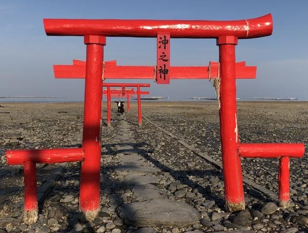 佐嘉神社の紅葉とゾンサガスタンプラリー (61)