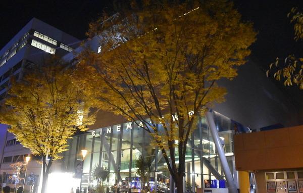 冬のFAガール舞台めぐり (12)