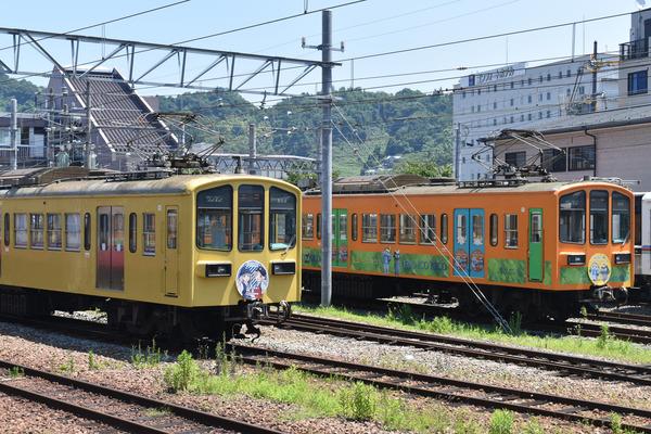 近江鉄道伊豆箱根鉄道コラボHM (3)