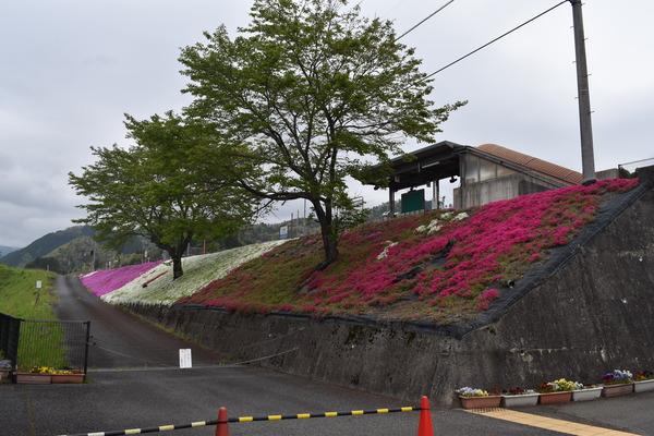 宮本えりおと恋山形駅 (4)