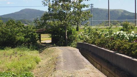 新道寺 (5)