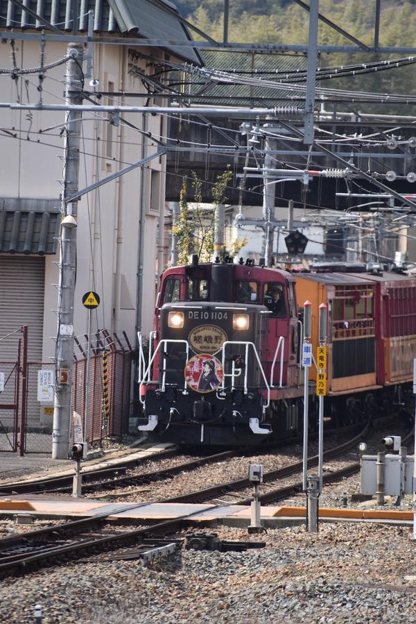 嵯峨ほづきHM (14)