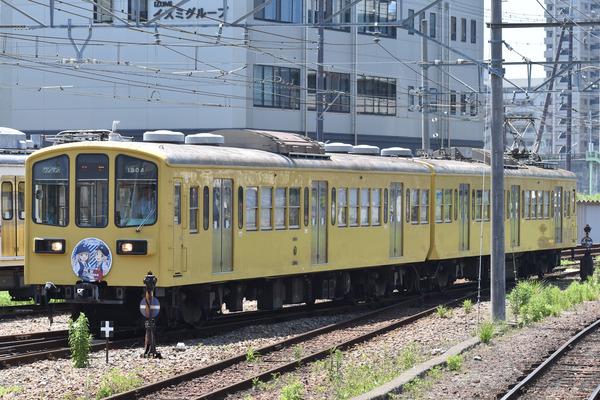 近江鉄道伊豆箱根鉄道コラボHM (25)