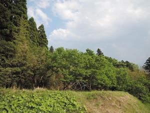 150512-マリポ農園1