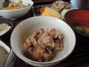 141210-酵素玄米ごはん