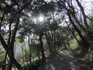 150331-三舟山1