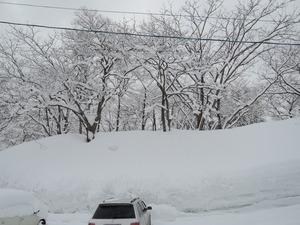 150211-雪景3