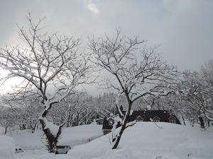150211-雪景6