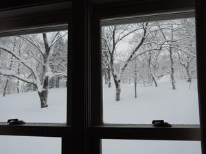 150211-雪景1