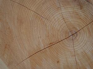 120309-木材