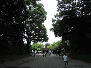 150530-明治神宮参道2