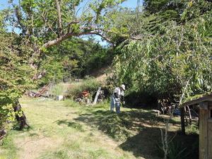 140804-草刈り隊2