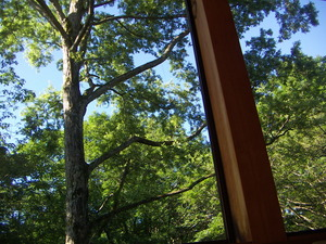 151116-窓景1