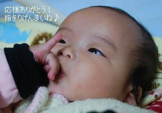 saki_20111120104946.jpg