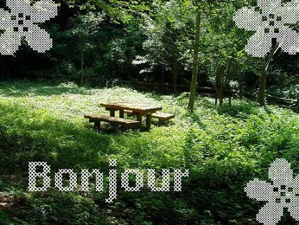 bonjour1_20110312091218.jpg