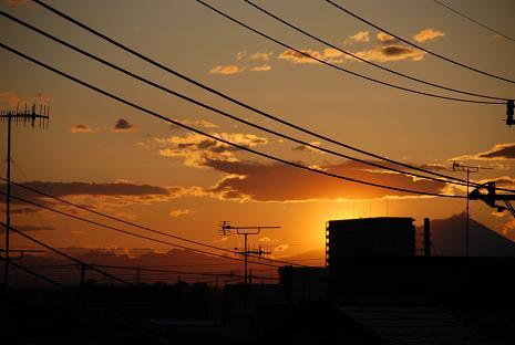 DSC_0102_20110429181648.jpg