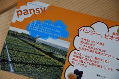 DSC_0522_20111014150115.jpg