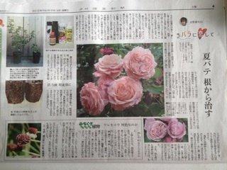 2012-09-15-08-02-image.jpg