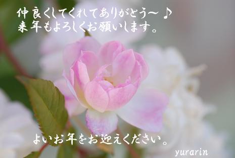 DSC_00861.jpg