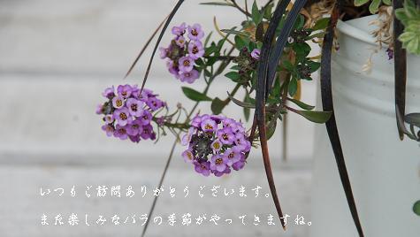 a1_20130324115943.jpg