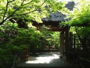 静岡県の某温泉地に行ったときの話。