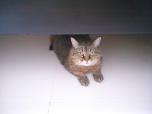 KIMG6338[1]