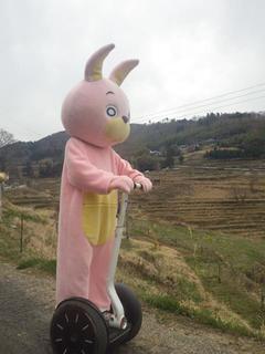 momoirousahi-YGT006