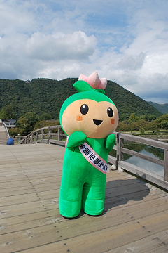 ha-suchan-YMG003
