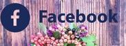 フェイスブック 924