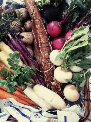 馬場修一郎農園さんの野菜