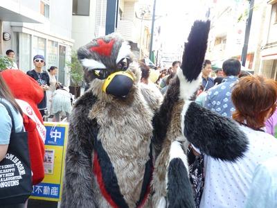 P1080733_サスケ