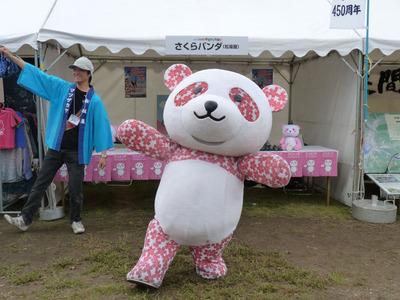 ゆるキャラ祭り_さくらパンダ_ダンス