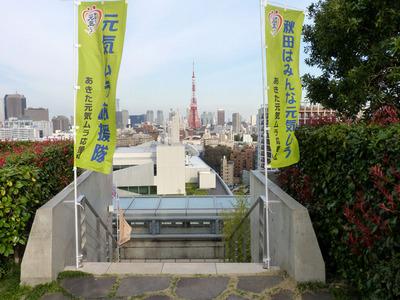 P1030832_たんぽ小町_東京タワー