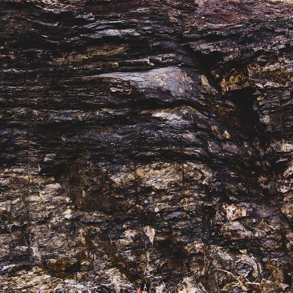 Find Momo(モモを探せ)に関連した画像-06