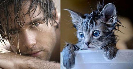 ネコだけど、モデルのポーズに関連した画像-07