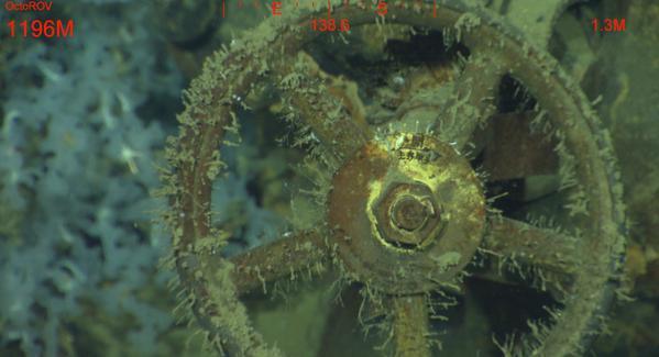 戦艦「武蔵」が発見に関連した画像-02