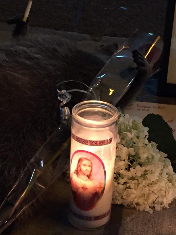 街中で死んだアライグマに、カナダ人が続々と追悼に関連した画像-07
