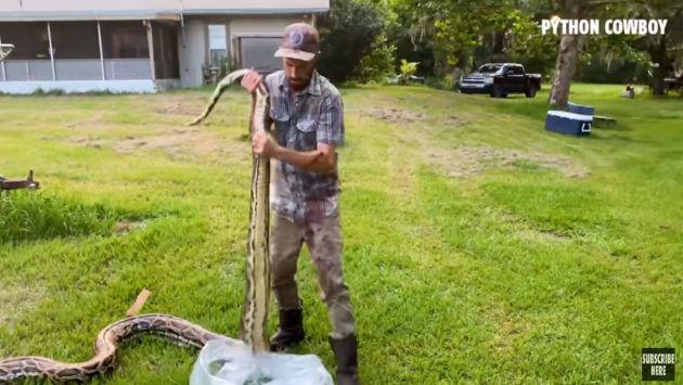 フロリダ ニシキヘビ 巨大に関連した画像-05