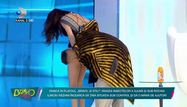 llinca Vandiciに関連した画像-04