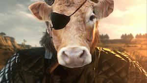 逃げ出したポーランドの牛に関連した画像-05