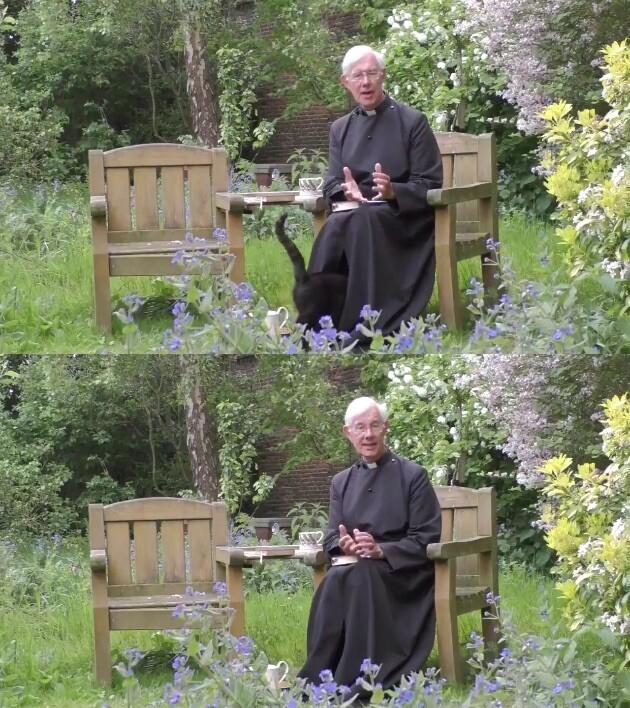 説教 カンタベリー大聖堂 ネコ 猫 イギリスに関連した画像-03