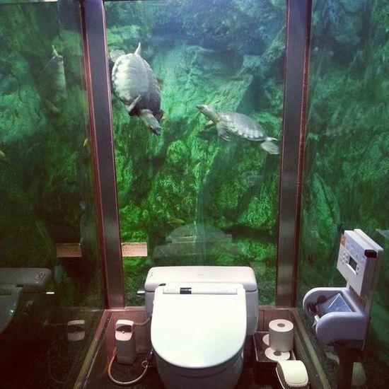 日本の珍トイレに関連した画像-08