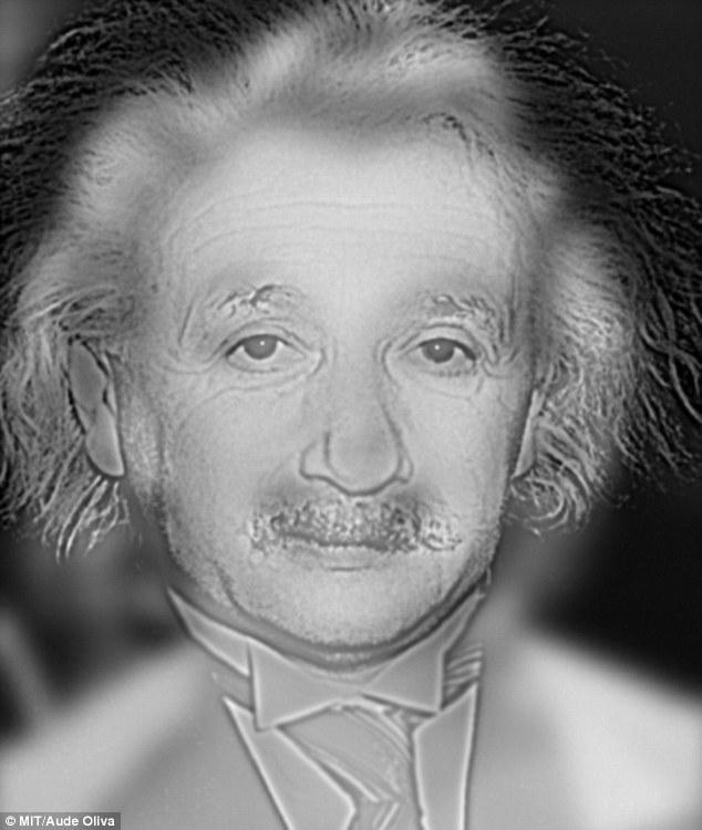 マリリン・モンローに見える「アインシュタインの画像」に関連した画像-02