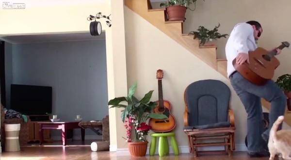 自業自得を味わったネコの飼い主に関連した画像-04