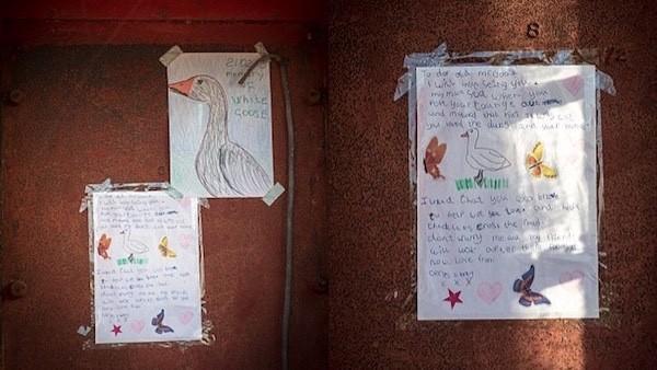 イギリスの村サンドンでガチョウ射殺に関連した画像-05