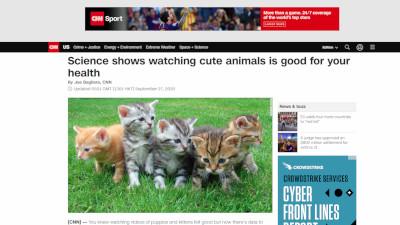 イギリス 可愛い動物 不安に関連した画像-02