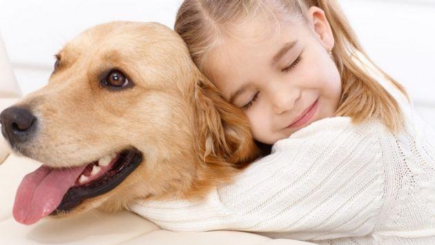 自閉スペクトラム症 行方不明 犬に関連した画像-01