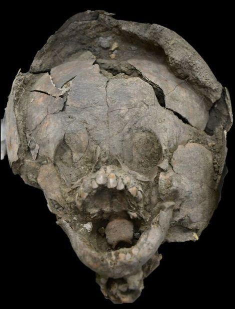 サランゴ古代遺跡発掘地に関連した画像-03